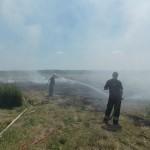 Niedzielny pożar pod Przygodzicami