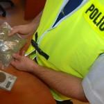 Policjanci na tropie marihuanistów