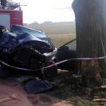 Audi uderzył w drzewo (gm. Raszków)