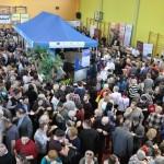 Festiwal o smaku serowym