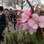 Tysiące na targach rolno-ogrodniczych w Przygodzicach