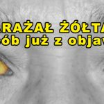 Gej rozsiał wirusa żółtaczki w Ostrowie i Krotoszynie?