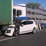 Wypadek w Niedźwiedziu. Trzy ciężarówki i osobówka