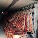 Wypadek ze świniami może pogrążyć firmę