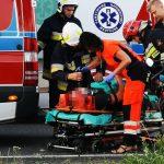 Sarna spowodowała wypadek w Czekanowie