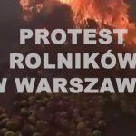 Rolnicy protestowali w Warszawie. Podpalili opony, wysypali jabłka czy martwe świnie