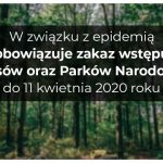 Zakazali wstępów do lasów