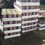 Miasto kupiło tonę karmy dla bezpańskich kotów