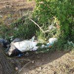 Kto zrobi porządek ze śmieciami przy oczyszczalni ścieków