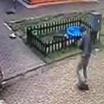 Ukradł psa ze schroniska. Dostał mandat