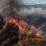 Duży pożar pola we Wtórku (aktualizacja)