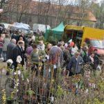 W niedzielę targi rolnicze w Przygodzicach